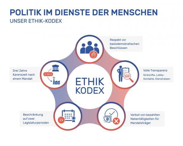 """Ehrenkodex von """"Demokratie in Bewegung"""". Grafik: DiB"""